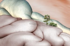 Fleischige Landschaft III